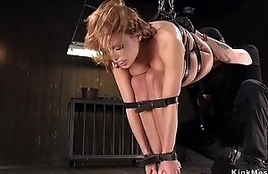 Well-endowed oiled beauty pussy vibed in bondage